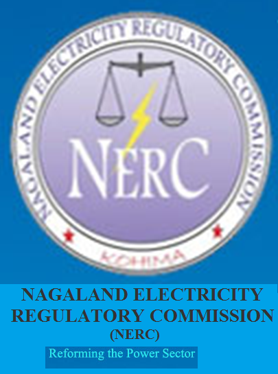 NERC conducts first-ever power consumers' court