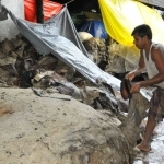 Kanpur tanneries asked to shut down again