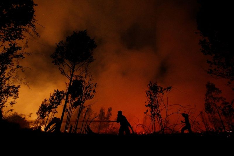 File picture of firefighters trying to extinguish forest fires at Sebangau National Park area in Palangka Raya, Central Kalimantan province, Indonesia on September 14, 2019. (REUTERS File Photo)