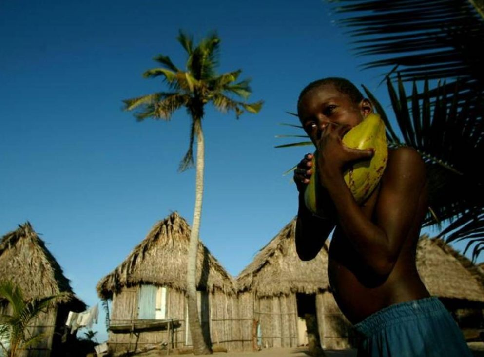 Caribbean indigenous people return to roots as COVID-19 ...
