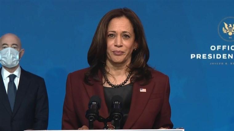 US Vice President-elect Kamala Harris.