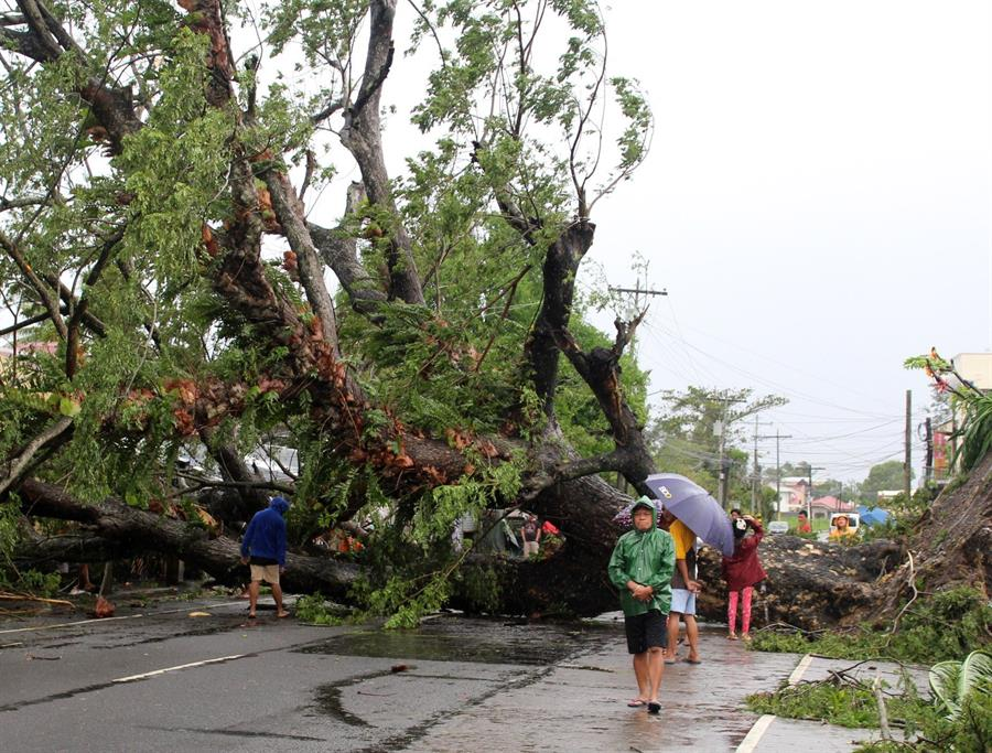 11 killed as typhoon Kammuri hits thousands of Philippine families