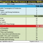 Nagaland's SDGs report card: The Good, the Average and the Ugly